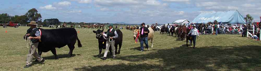 Clunes Agricultural Show 2020